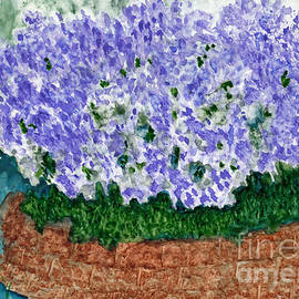 Sage Blossoms in the Herb Garden by Conni Schaftenaar