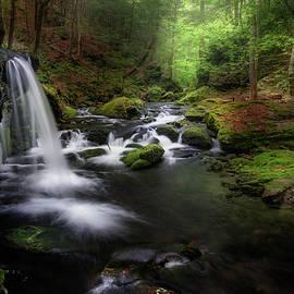 Sages Ravine Serenity by Bill Wakeley