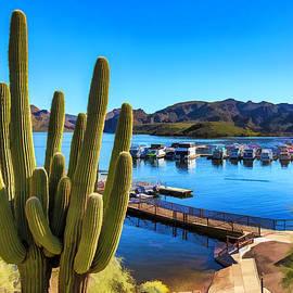 Saguaro Lake Marina by Lorraine Baum