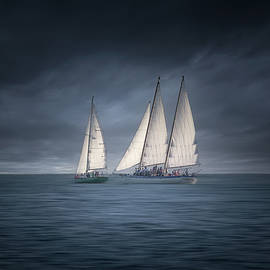 Sail Into the Storm by Mark Andrew Thomas