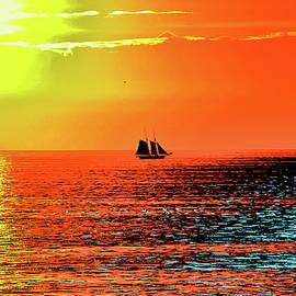 Sail by Susan Maxwell Schmidt