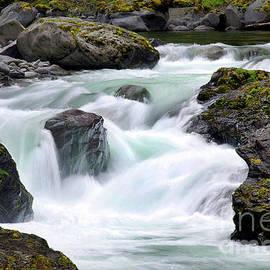 Salmon Cascades - Sol Duc River by Douglas Taylor