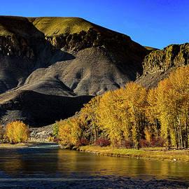 Salmon River by Arianthi Ferronato