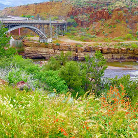 Salt River Canyon Bridge by Susan Buscho