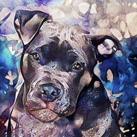 Samson the Pit Bull by Peggy Collins