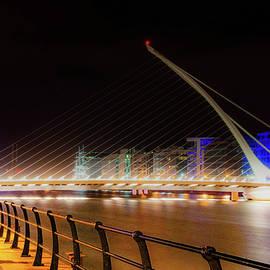 Samuel Beckett Bridge by Rob Hemphill