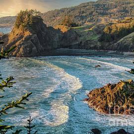 Samuel H Boardman Arch Rock Viewpoint by Michele Hancock