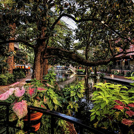 San Antonio Riverwalk View From The Rainforest Cafe by Judy Vincent