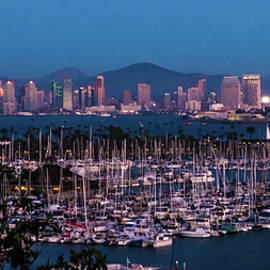 San Diego Cityscape and Marina by Patti Deters