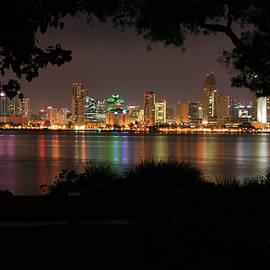 San Diego Skyline at Night by Scott Cunningham