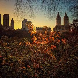San Remo Sunset - Central Park New York by Miriam Danar
