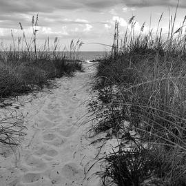 Sand and Sea Oats - Headed for the Beach by James C Richardson