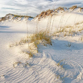 Sand Dune and Sea Oats by Bill Chambers