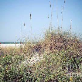 Sand dune on Siesta Key beach by Claudia M Photography