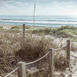Sand Dune Trail in Beachhouse Hues by Debra and Dave Vanderlaan