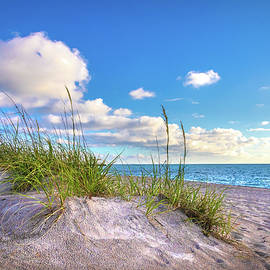 Sand Dunes in Paradise by Debra and Dave Vanderlaan