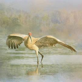Sandhill Crane - Admiration by Patti Deters