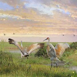 Sandhill Crane Courtship by Spadecaller