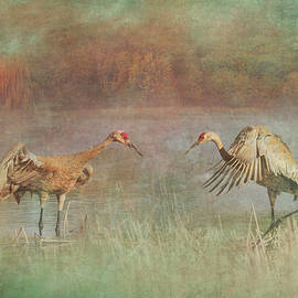 Sandhill Cranes Face Off by Patti Deters