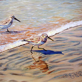 Sandpipers by Becky Miller