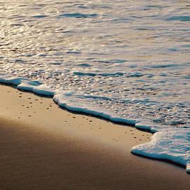 Sandy Beach at Dawn - Close Up by Arlane Crump