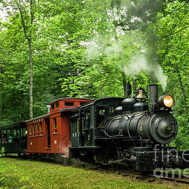 Sandy River Railroad by Alana Ranney