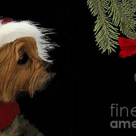 Santa Baby Finds Her Gift by Janette Boyd