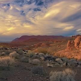 Santa Clara River Reserve Utah by Heidi Fickinger