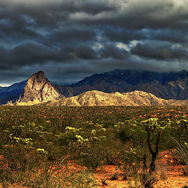 Santa Rita Mountains Winter Light by Chance Kafka