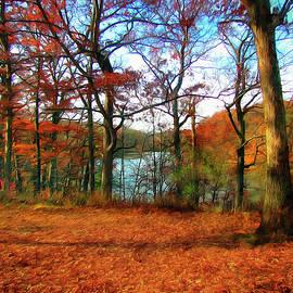 Sauk Lake View by Cedric Hampton