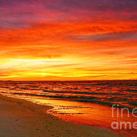 Scarlet Dawn, Florida by Catherine Sherman