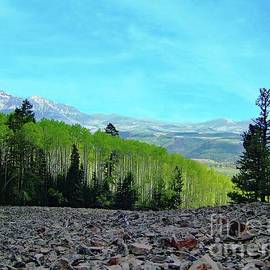 Scenery From Telluride by Suzanne Wilkinson