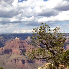 Scenic Overlook by Gordon Beck