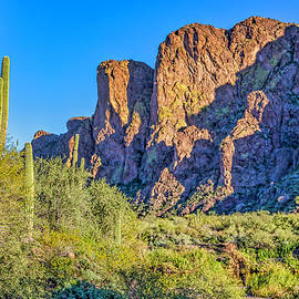 Scintillating Sonoran Desert by Lorraine Baum