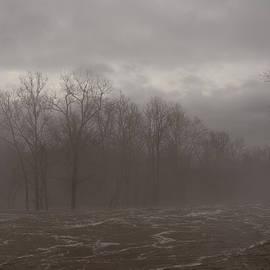 Scioto River by Laura Blumenstiel
