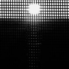 Screen Sunset Black and White by Claudia O'Brien