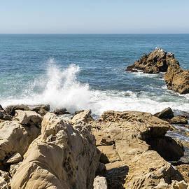 Sculpted by Waves - Corona Del Mar Coast in Orange County California by Georgia Mizuleva