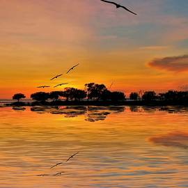 Sea And Sunset Reflections Birds Fly High by Joan Stratton