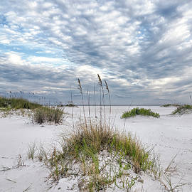 Sea Oats and Clouds by Bill Chambers