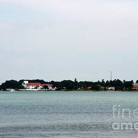 Sea ocean and tropical forest jungle with communication tower in Jaffna Peninsula Sri Lanka by Imran Ahmed