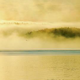 Sea Smoke at Gleasons Point by Benjamin Roberts