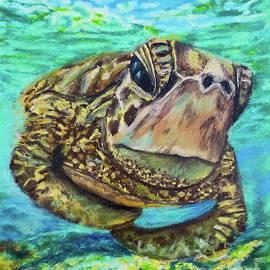 Sea Turtle Oil Pastels by Olga Hamilton
