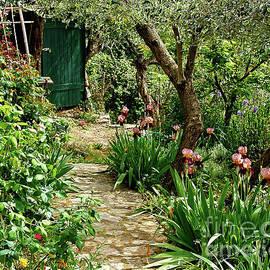 Secret Garden Door by Peter Horrocks