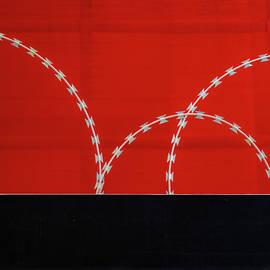 Seeing Red by Hugh Warren