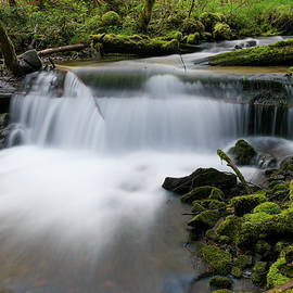 Serenity in its flow by Jeff Swan