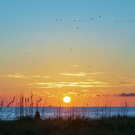 Setting Sun by Mary Ann Artz
