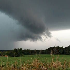 Severe Warned Storm Near Cross Plains, Tennessee  by Ally White