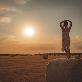 Sexy woman posing in the hay by Alyoshin Evgeniy
