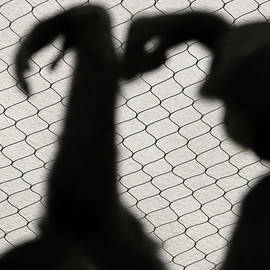 Shadow Dance of the Captives