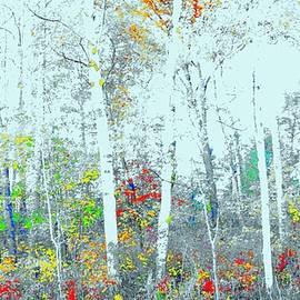Shadows of Tall Trees by Daniel Thompson
